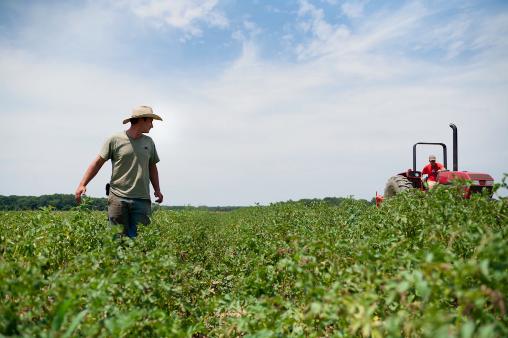 Natječaj za mlade poljoprivrednike