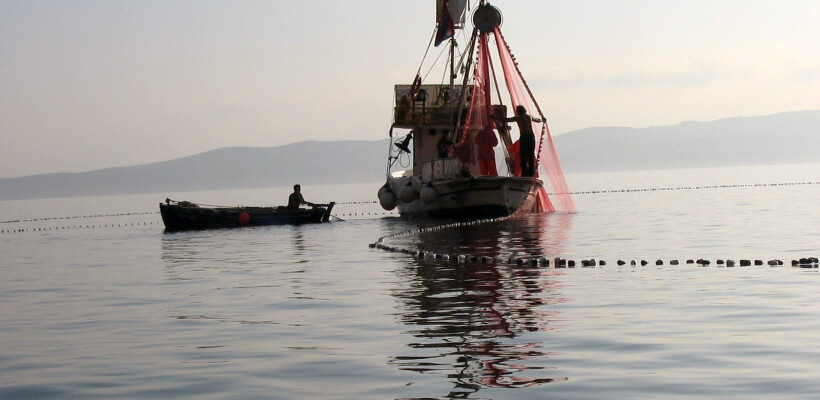 Ribari, ribarstvo, eu fondovi, bespovratna sredstva