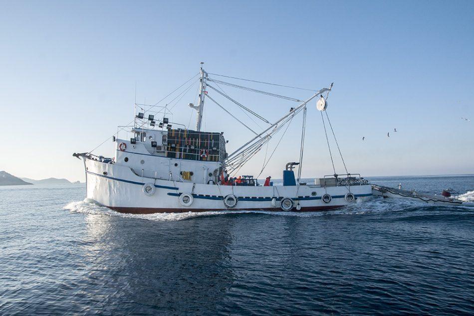 Ribarstvo, ribari, Diversifikacija i novi oblici prihoda