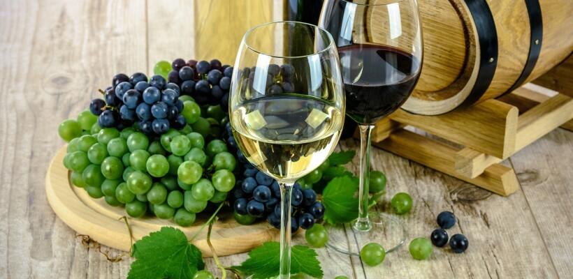 Ulaganja u vinarije i marketing vina