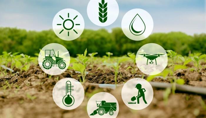 6.3.1 Potpora malim poljoprivrednicima